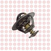Термостат Foton Aumark 1031, 1041 E049363000011