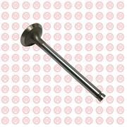 Клапан выпускной головки блока Foton Ollin 1049A, 1069 T3142A051