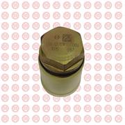 Клапан редукционный в рампе Higer KLQ6891GA с дв. ISBe 3974093