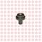 Вал ролика промежуточного Foton Auman 1113 с дв. ISF 3.8 3935229